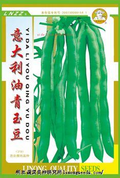 【金牌佬农】意大利油青玉豆(319)—菜豆种子