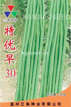 特优早30—豇豆种子