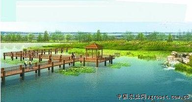 武汉新绿化规划 张公堤将成超级森林公园(图)