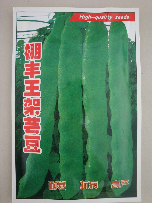 棚丰王架芸豆—菜豆种子