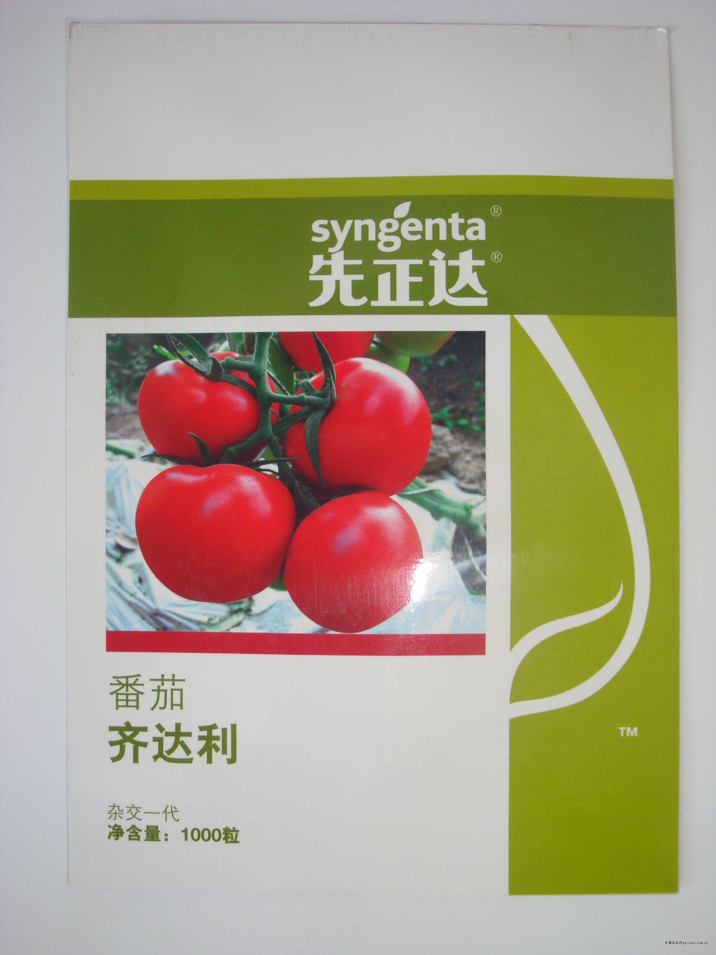 齊達利—番茄種子