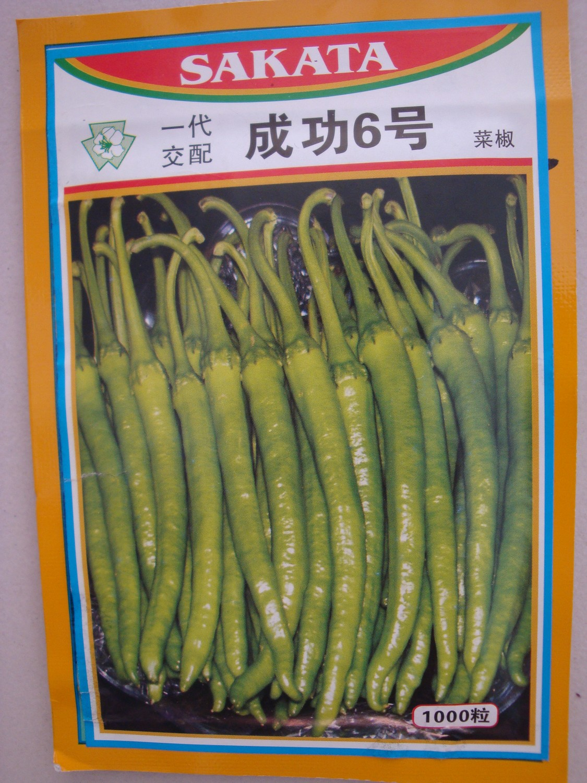 日本SAKATA成功六號—辣椒種子