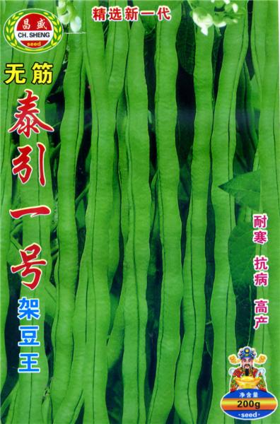 无筋泰引一号-架豆种子