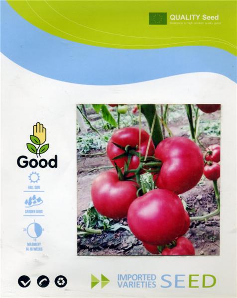 粉盈-番茄種子