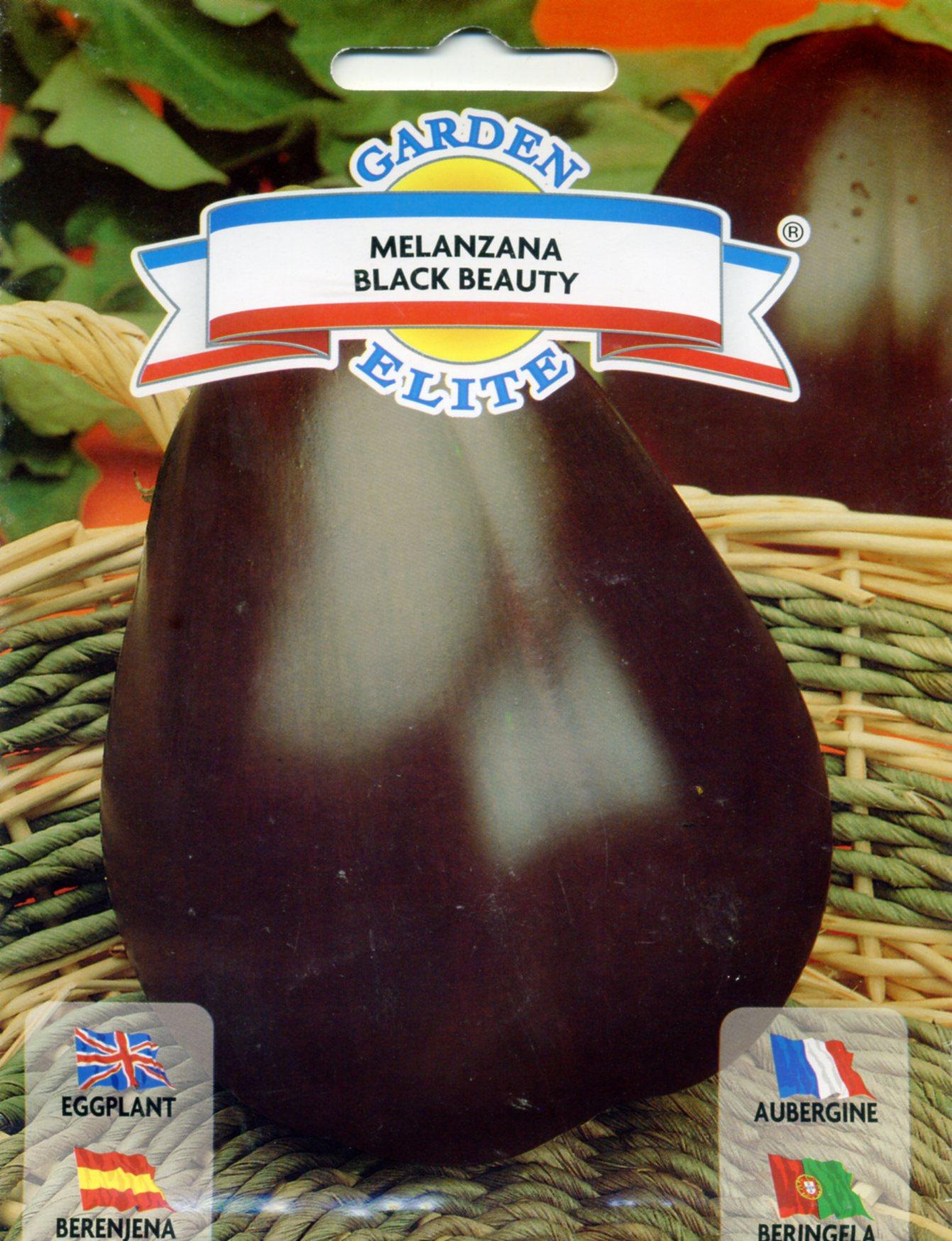 巨形茄-茄子种子