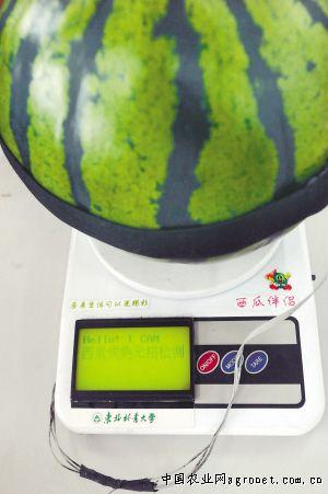 http://www.7loves.org/jiankang/656502.html