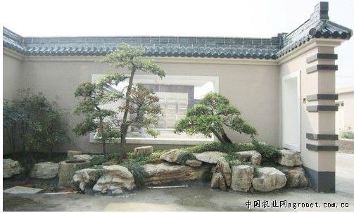何氏别墅庭院设计