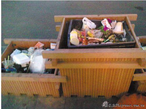 鲜花扔进垃圾桶