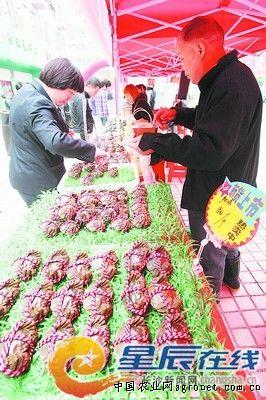 """马王堆海鲜水产市场从2008年开始每年举办闸蟹美食节,""""大闸蟹的销量"""