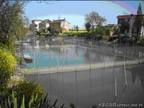 江苏海安县南莫镇以科技入户为平台 大力发展河沟养殖(图)