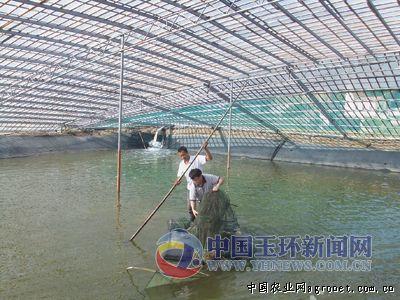 在玉环银达水产养殖有限公司
