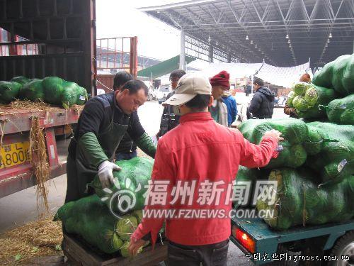 福州:海峡蔬菜批发市场百余种蔬菜日交易近2000吨(图)