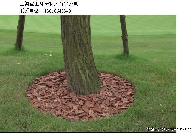 供应园林覆盖松树皮
