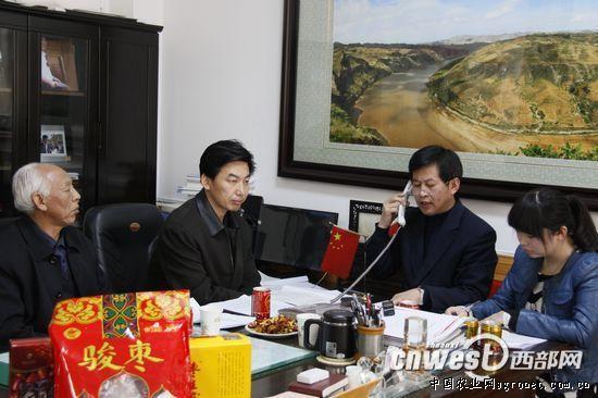 陕西清涧县:以枣富民、以枣兴县