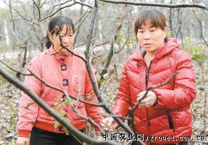 http://www.xaxlfz.com/xianjingji/31433.html