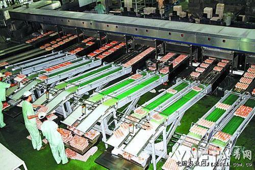 """北京德青源布局""""未来农场; 生态 养殖,食品加工,清洁能源,有机肥料"""