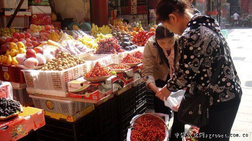 http://www.qwican.com/jiaoyuwenhua/1329782.html