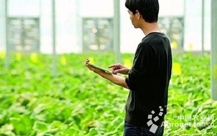 互联网农业迎政策蜜月期