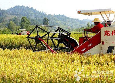 农业生产方式,农业种植结构