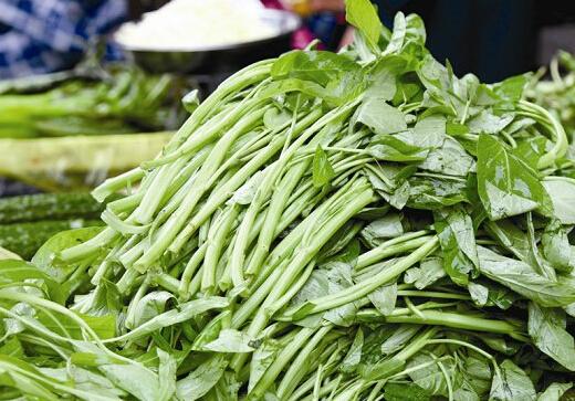武汉部分叶菜类价格猛跌一半(图)图片