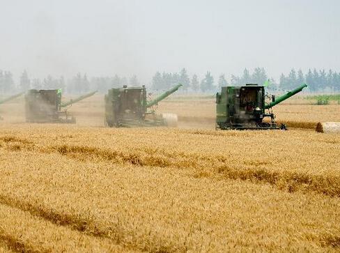 中国农业生产结构