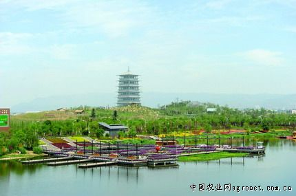 西安浐灞生态区21个总投资213亿元
