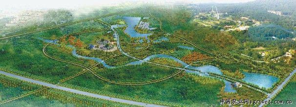 大蜀山森林公园景观以植物造景
