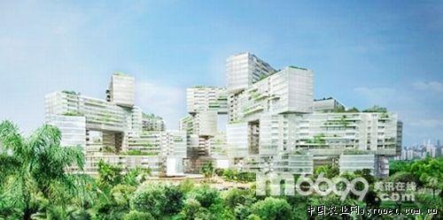 新加坡:绿色建筑住宅群