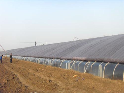 供应冬暖式温室,寿光华兴蔬菜大棚建设工程有限公司