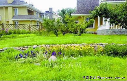 北京渡外·云居别墅