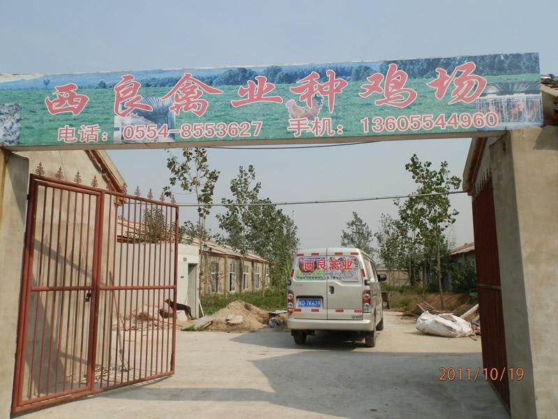 凤台县丁集乡希良综合养殖场