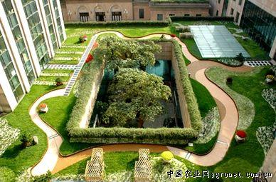 屋顶绿化需各方支持 共同创建美丽 空中花园