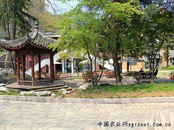 之江·凤凰创意国际园图片