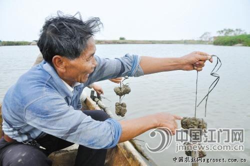 http://www.alvjj.club/shehuiwanxiang/88387.html