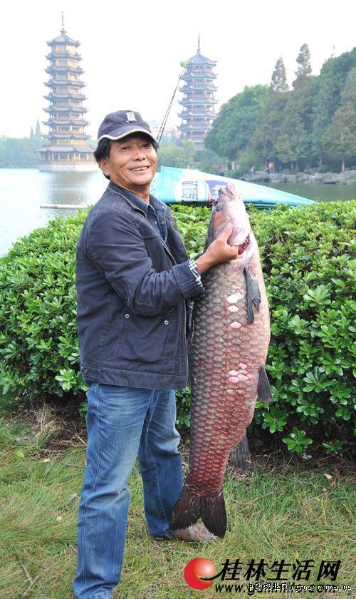 http://www.dibo-expo.com/guonaxinwen/892505.html