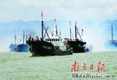 广东茂名市电白县博贺镇建广东省最大渔港 推电白向前进(图)