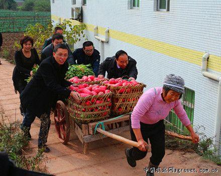 重庆市平滩镇白鹤小学图片