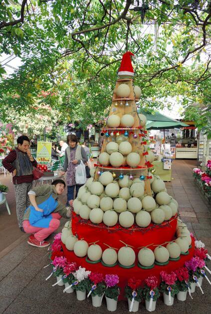 日本高知县推出香瓜圣诞树 猜中数量有奖(图)