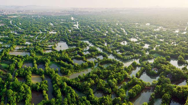 杭州园林:风景园林设计行业领军者(图)