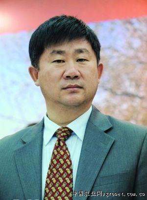 张铁生的贵人--金卫东(图),蔬菜新闻中心,中国蔬