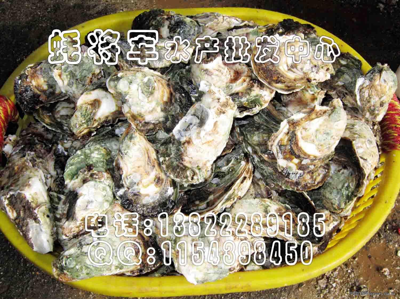 广东海鲜批发市场
