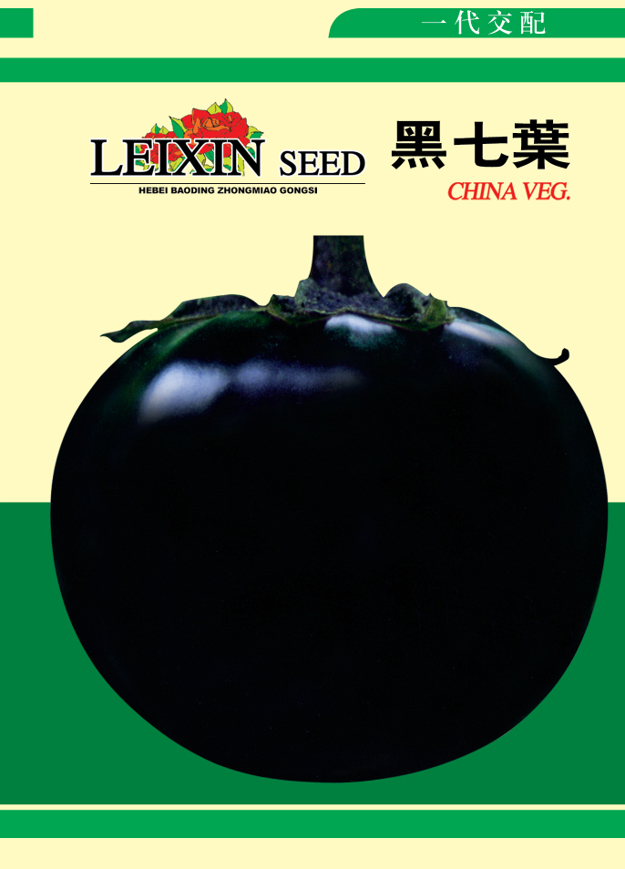 黑七叶—茄子种子
