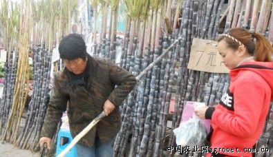 http://www.ningbofob.com/kejizhishi/13070.html