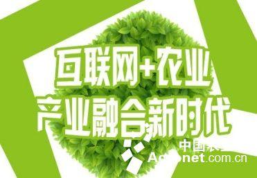 """""""互联网 农业""""创出新模式(图)"""