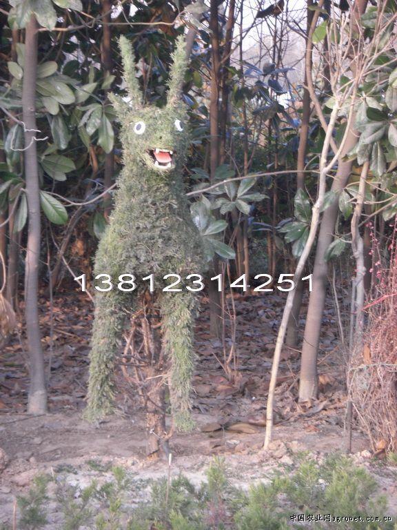 供应动物造型风景树