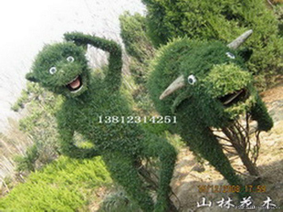 绿化苗木_