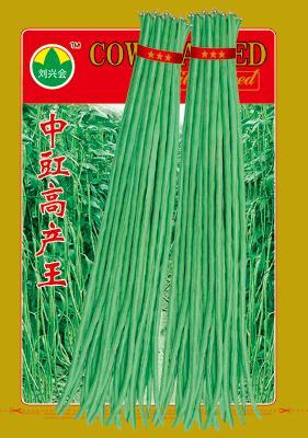 中豇高产王——豇豆种子