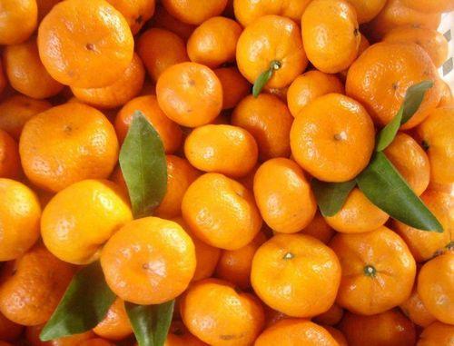 橘子笑脸手机壁纸