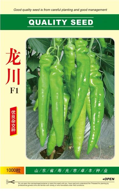 龙川F1—辣椒种子