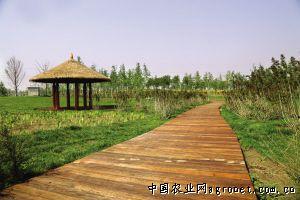http://www.xaxlfz.com/tiyuyundong/52147.html